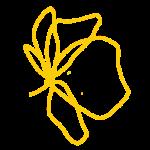 Logo Lona New Poppy